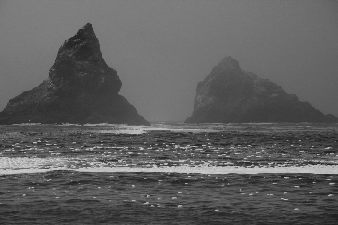5507--Oegon Coast Rock BW